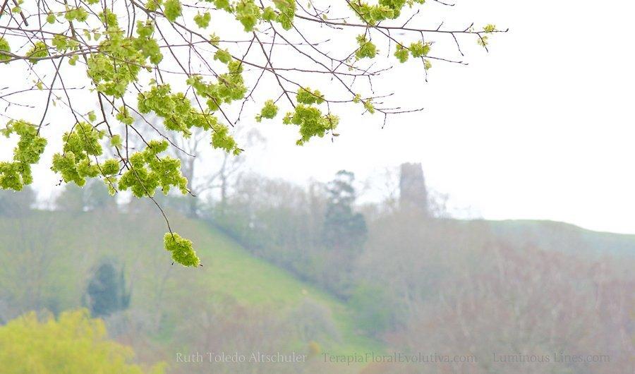 Torre construída no topo do monte (Ilha de Avalon) em Glastonbury, Grã Bretanha